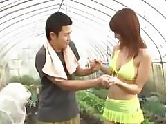 Asian Girl In Bikini Getting Her Tits Rubbed Giving Handjob For Shy Guy In The Glasshouse